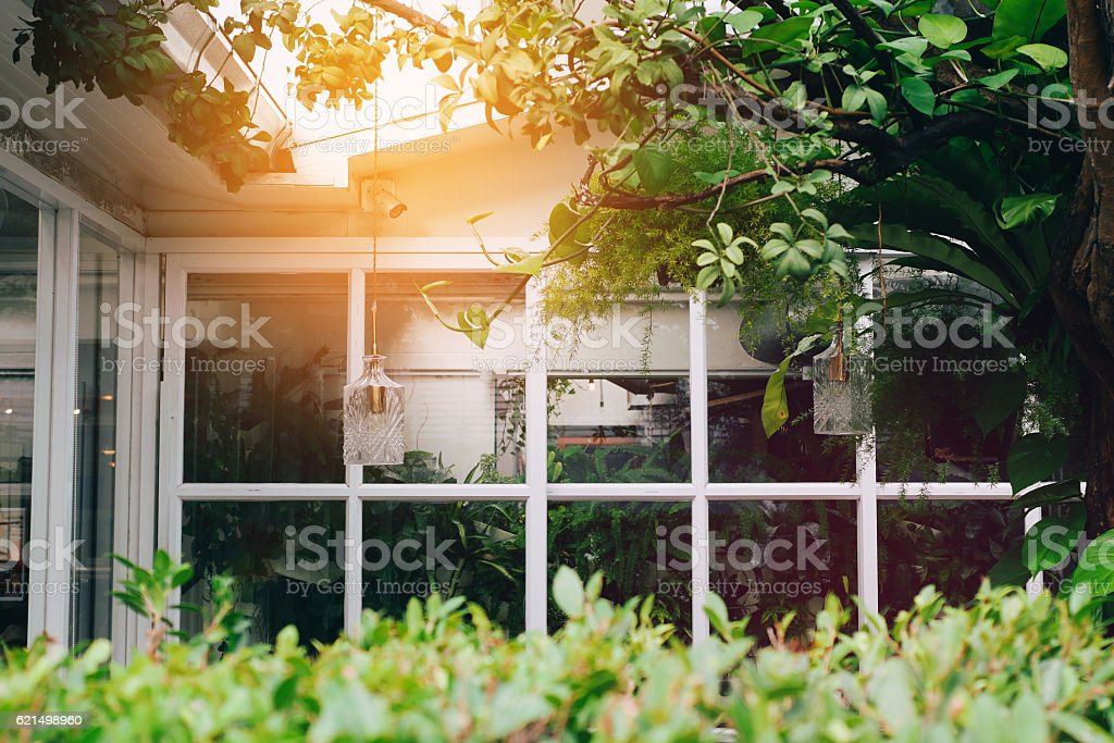 House With Windows Surrounded By Tree photo libre de droits