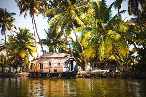 House-boat pleasure cruise ship in India, Kerala on the seaweed-covered river channels of Allapuzha in India. Boat on the lake in the bright sun and palm trees among the tropics. Sight Houseboat