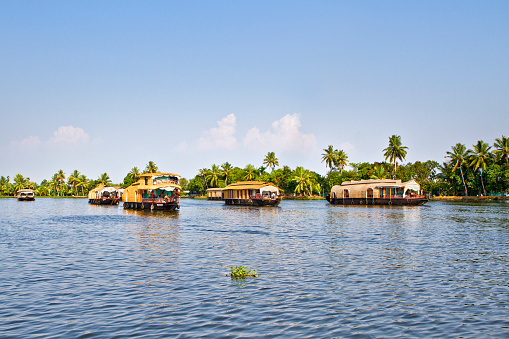 Houseboats on the backwaters of Kerala in Alappuzha (Alleppey) in India. A traditional tourist attraction is the house-boat on the river channels of Kerala.