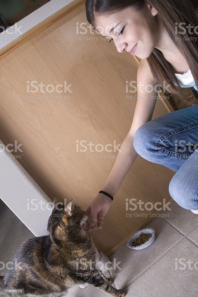 Household Chores - Feeding the Cat royalty-free stock photo