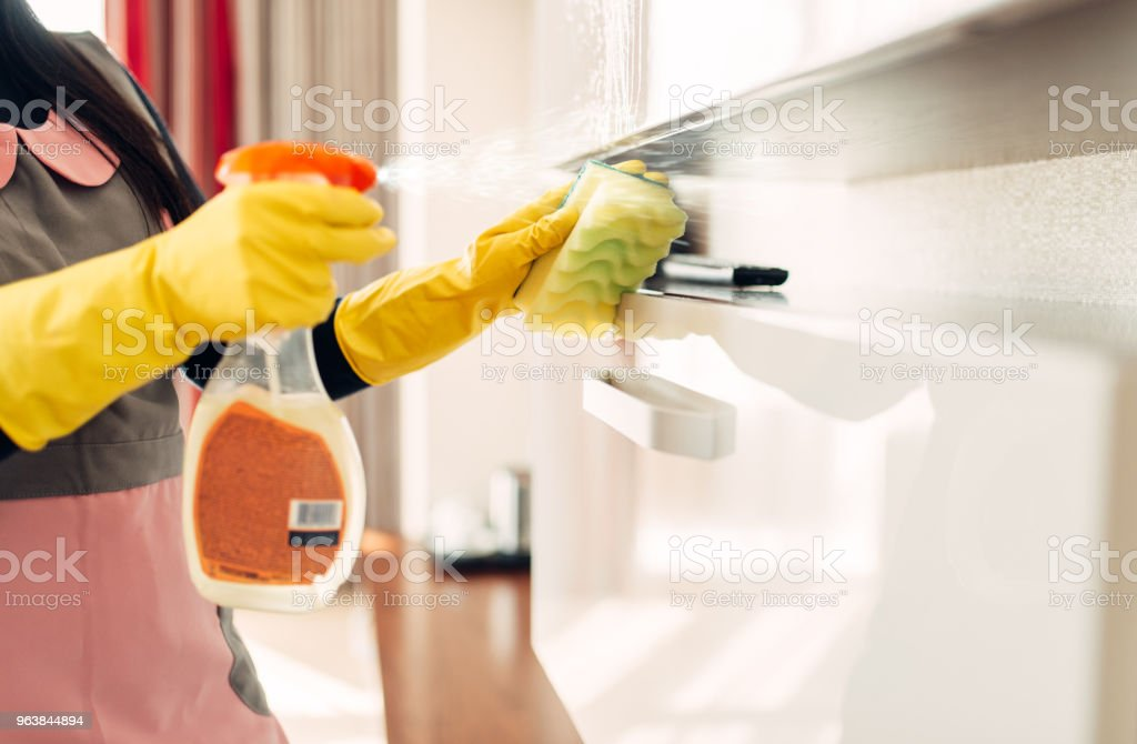 Housemaid cleans furniture with a cleaning spray - Royalty-free Adult Stock Photo