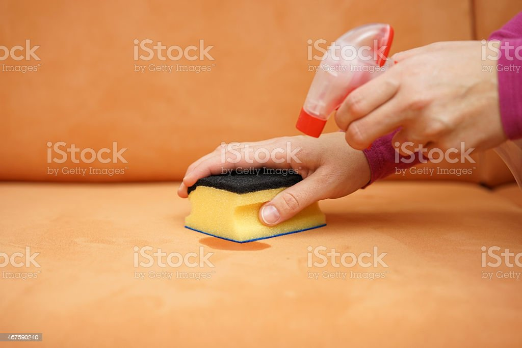 housemaid ist reinigen sofa mit spray-Flasche und Schwamm – Foto
