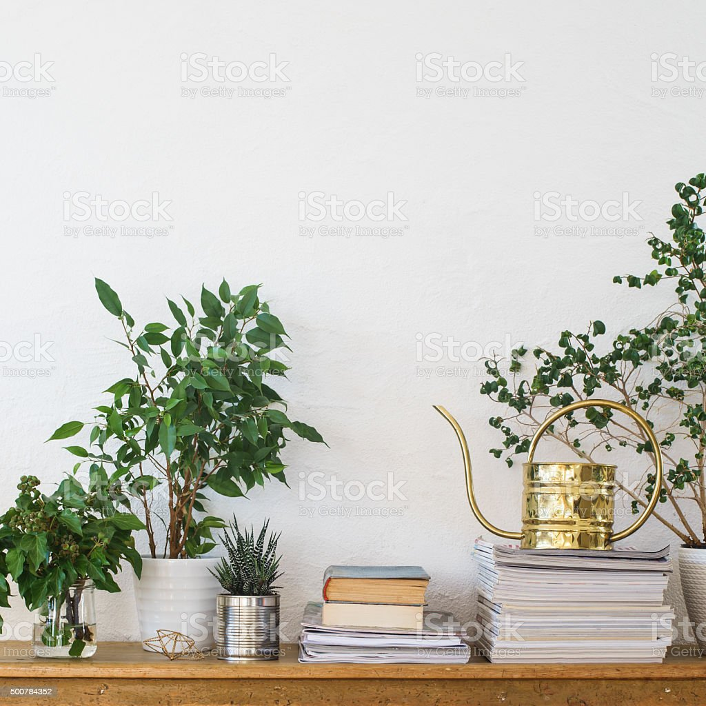 Houseplants, books, pile of journals and watering can stock photo