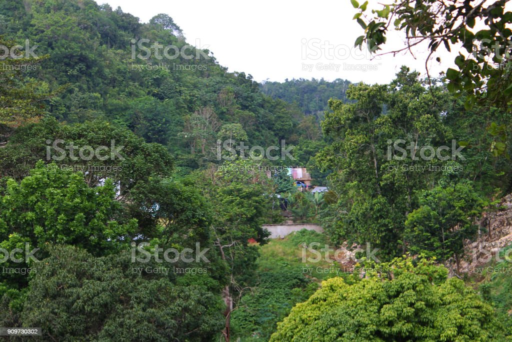 Huizen en hutjes genesteld tussen de weelderige, groene gebladerte dat betrekking heeft op de heuvel, Nine Mile, Jamaica. foto