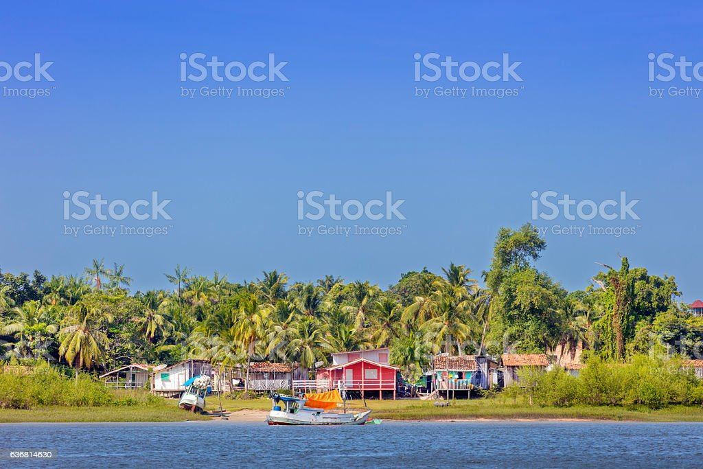 Houses built along the river in the Amazon stock photo
