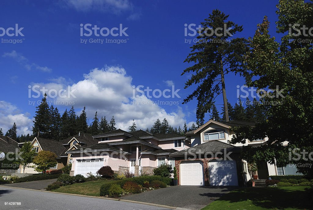 houses in a subdivision royalty-free stock photo
