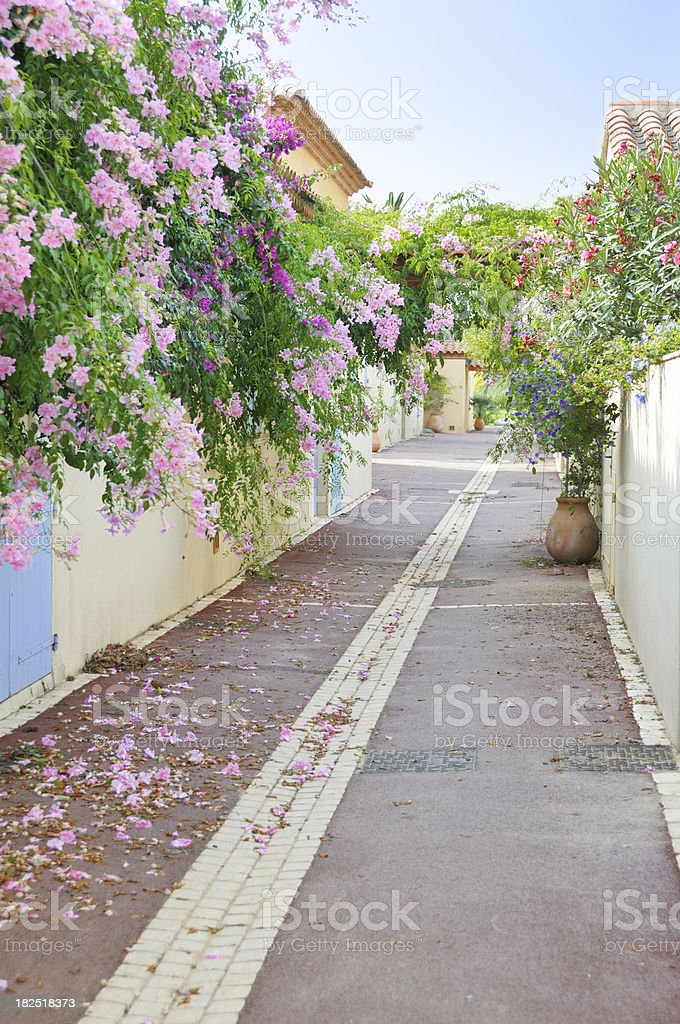 Houses in flowers on French Riviera stock photo