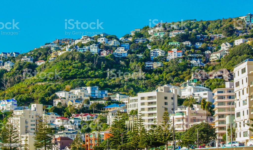 Houses in the city, Wellington, New Zealand stock photo