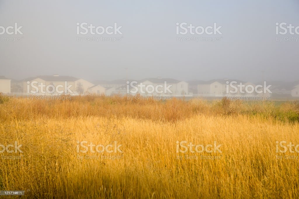 Houses in the Mist royalty-free stock photo