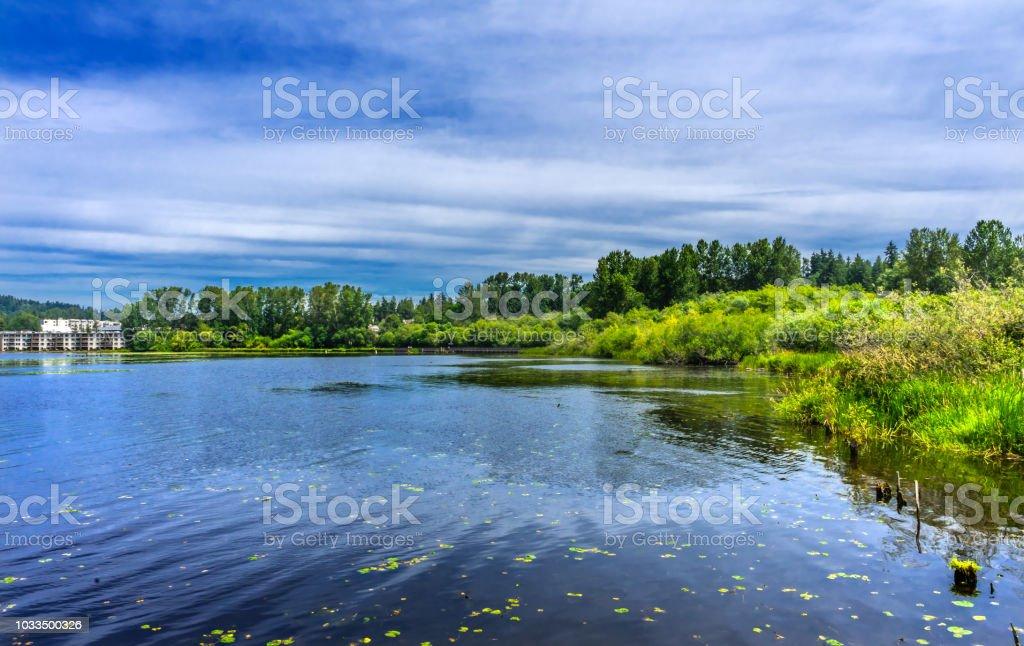 Houses Lake Washington Juanita Bay Park Kirkland Washington stock photo