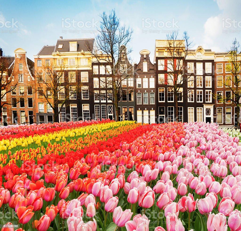 Casas de Amstardam, Países Bajos - foto de stock
