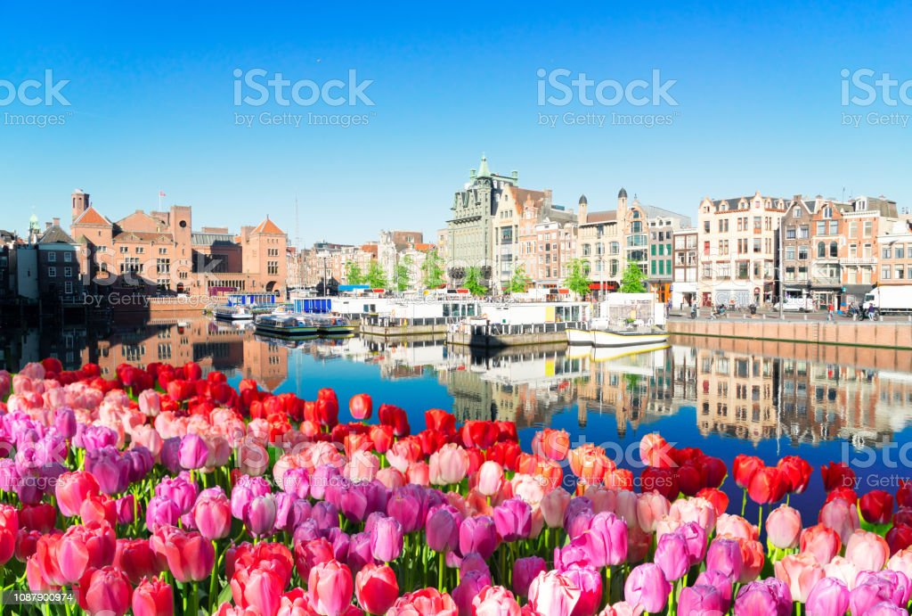 Houses of Amsterdam, Netherlands Amsterdam canal Damrak with typical dutch historical houses and boats at morning blue hour with tulip flowers, Holland, Netherlands. Amsterdam Stock Photo
