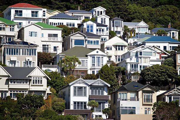 Houses on Mt Victoria Hill in Wellington A close-up shot of houses located on the side of Mt Victoria hill overlooking Wellington City in New Zealand wellington new zealand stock pictures, royalty-free photos & images