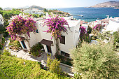 Typical white painted summer houses with bougainvillea in Yalıkavak, Bodrum, Turkey