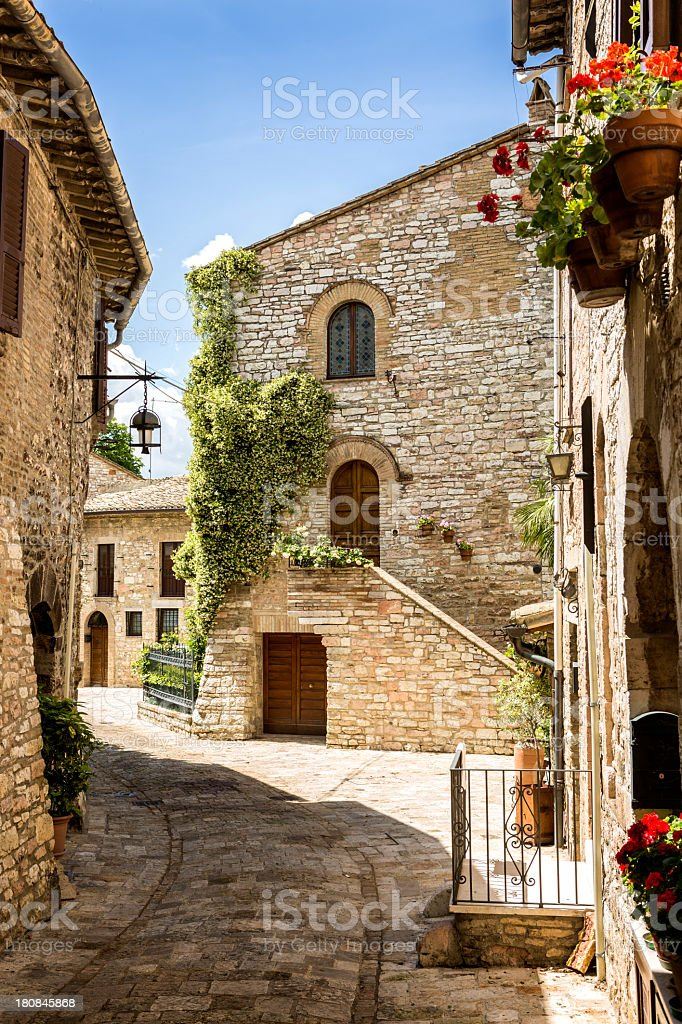 Houses with creeper plants in Assisi, Umbria, Italy stock photo