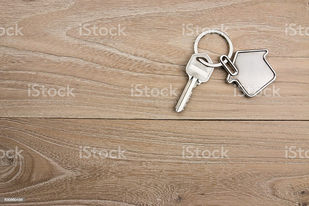 House-shaped key in the wood stock photo