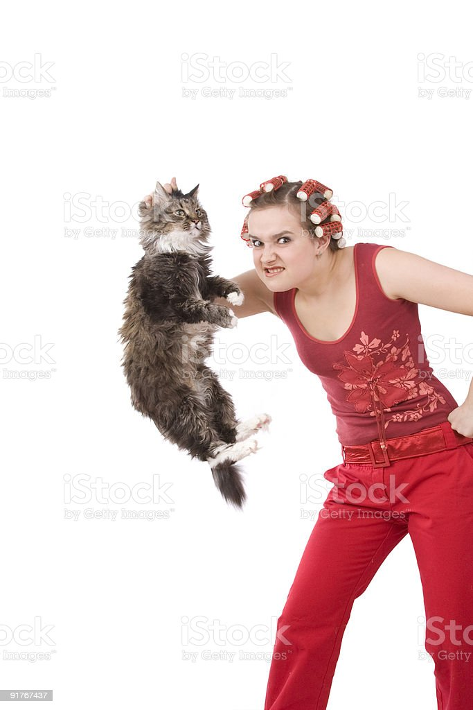 Housewife is holding soil cat. stock photo