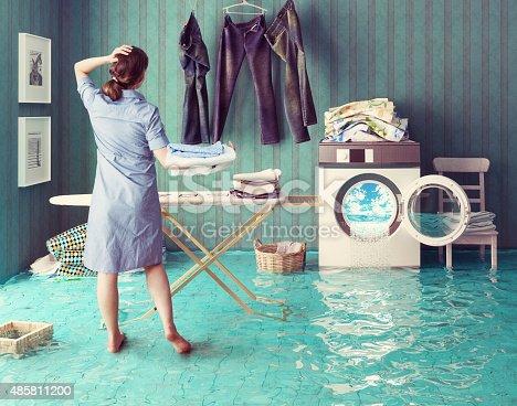 487597124 istock photo Housewife`s dreams 485811200