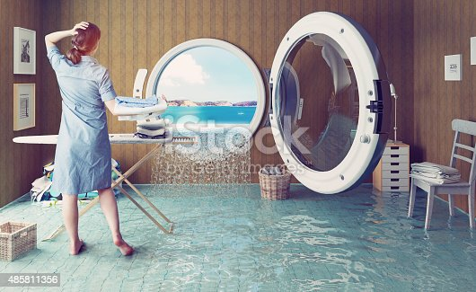 487597124 istock photo Housewife`s dreams 485811356