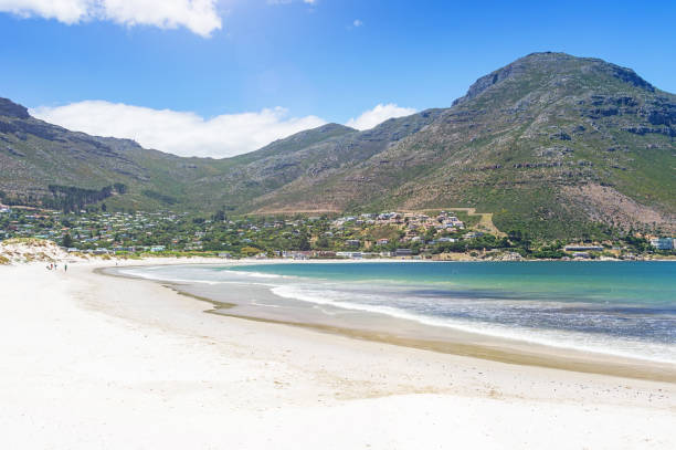 Hout Bay Beach Cape Town South Africa Hout Bay Beach at Hout Bay a town close to Cape Town,  Cape Peninsula, South Africa hout stock pictures, royalty-free photos & images