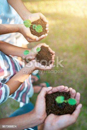 Closeup shot of unrecognizable kids holding budding plants