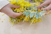 making of workshop about a christmas wreath or new year wreath with mimosa flowers and