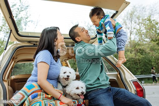 istock How to travel with baby and dogs 694409662