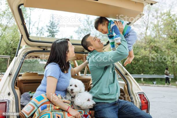 How to travel with baby and dogs picture id805834498?b=1&k=6&m=805834498&s=612x612&h=x3cxzkczzkqrwh6tb3fpfkc3wyvgdqoxrpgak1emdvm=