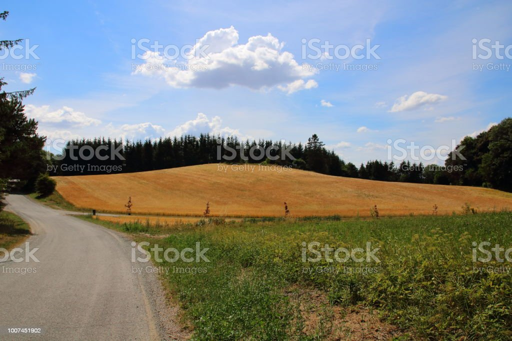Hærvejen the army road pilgrim route stock photo