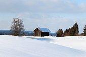 Hütte, Winter, Schnee, Allgäu, Baum, Hügellandschaft, Bayern, Panorama