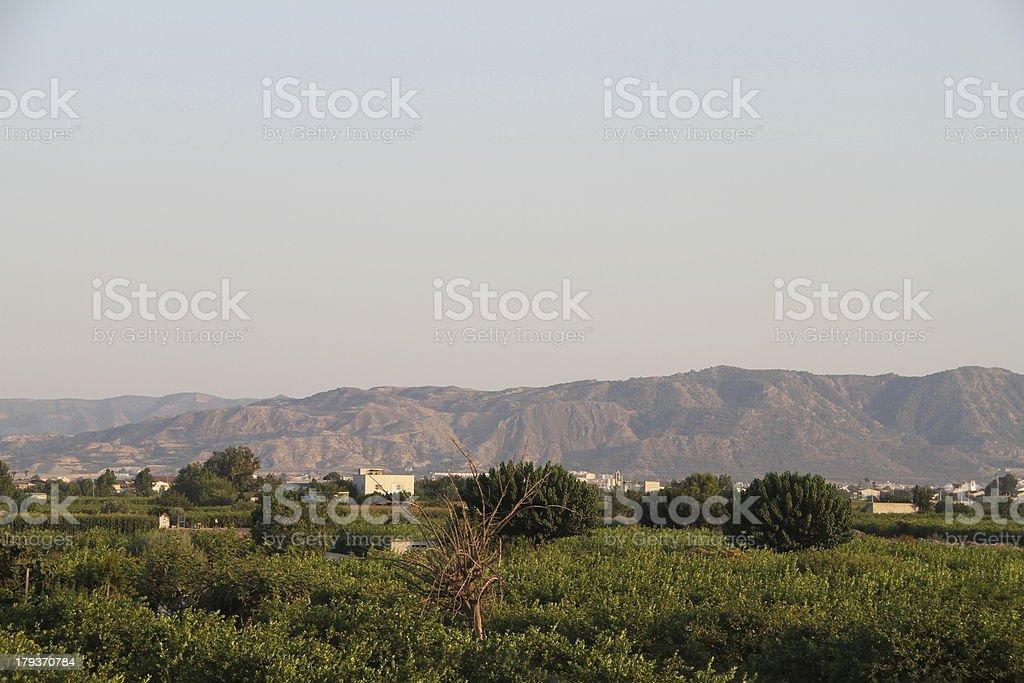 Huerta royalty-free stock photo