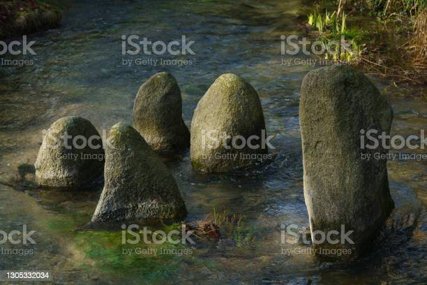 Photo of Huge boulder covered with moss stick out of the water.