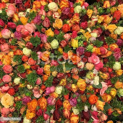 Huge bouquet of colorful roses