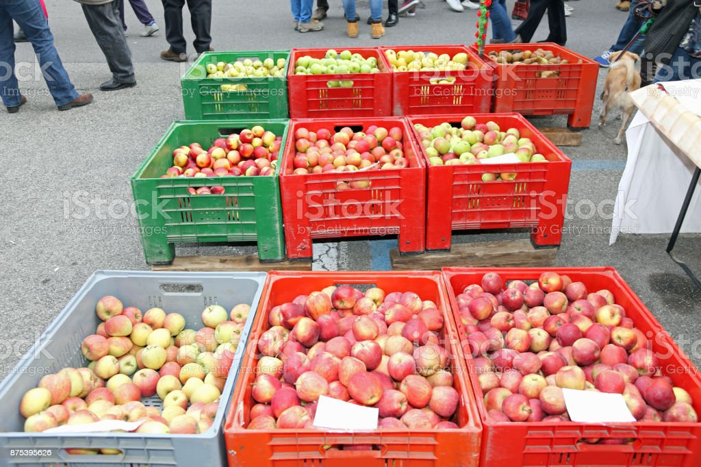 huge boxes of fruit with the ripe apples for sale at market stock photo