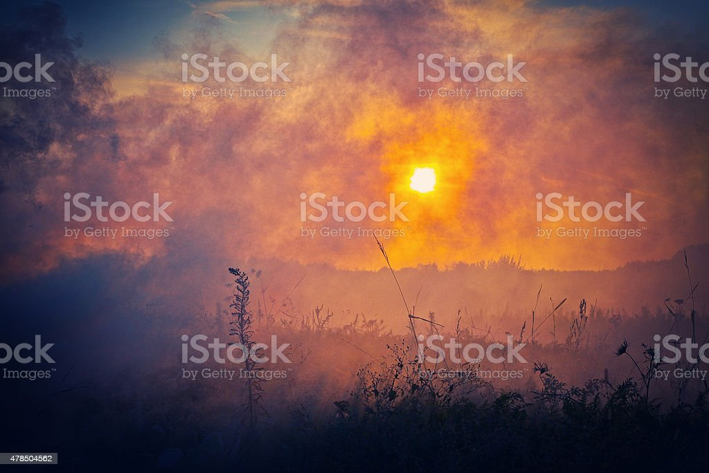 Huge bush fire, wildfire stock photo
