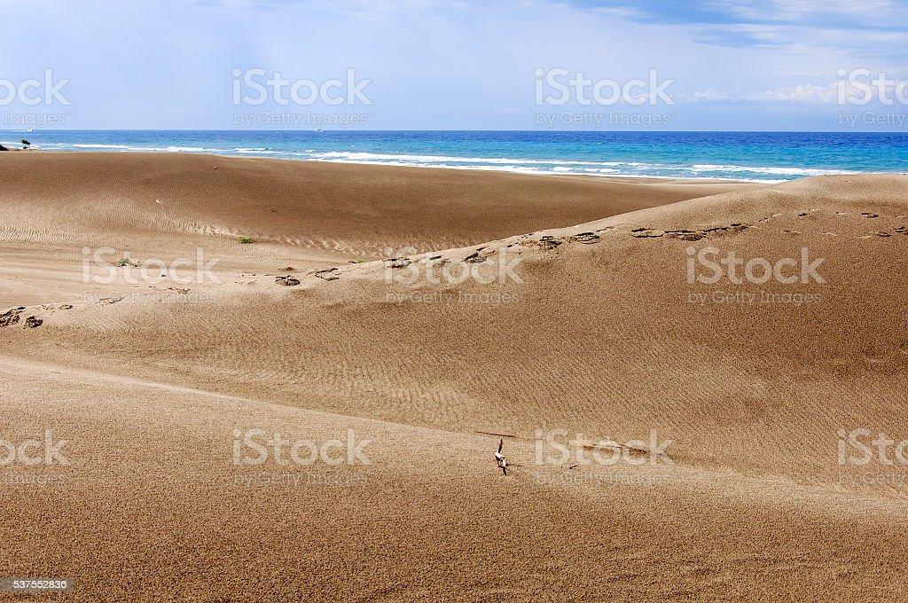 Huge dunes of the desert. stock photo