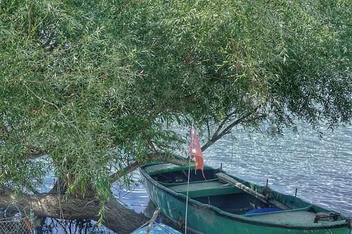 A huge oil tree and small fishing boat in uluabat lake (golyazi) in Bursa with small turkish flag