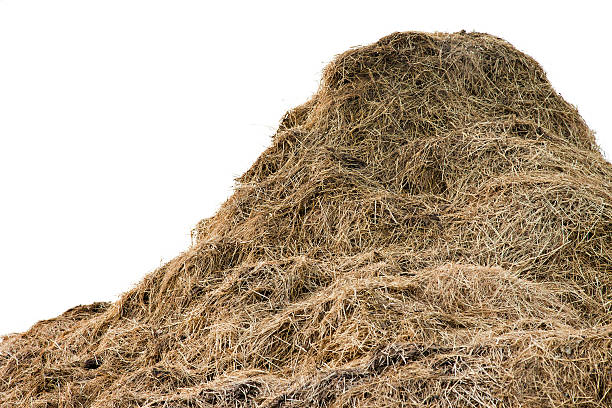 Huge pile of hay Huge compost hay stack photographed against a pale sky to simulate isolation on white. hay stock pictures, royalty-free photos & images