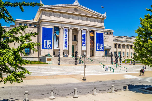 A huge public museum in Chicago, Illinois stock photo