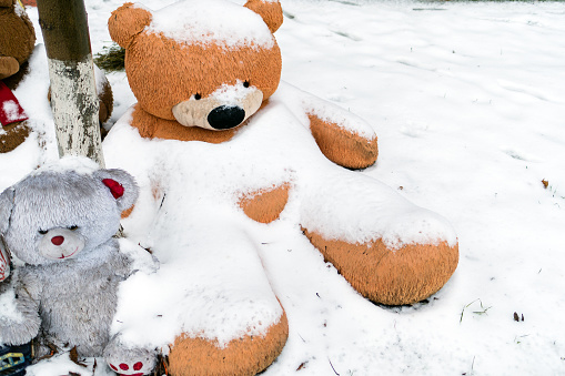A huge teddy bear is sitting in the snow. A symbol of loneliness, sadness and abandonment.