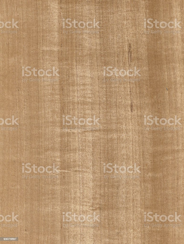 huge wood cherry tree texture royalty-free stock photo