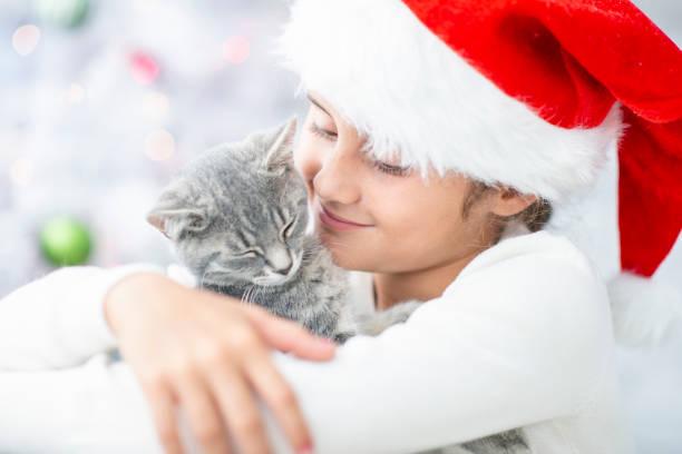 Hugging a cat picture id1065606070?b=1&k=6&m=1065606070&s=612x612&w=0&h=9qdhx tryzqjjlld7av3ipycncqmc3p6 qpq7ojiw a=