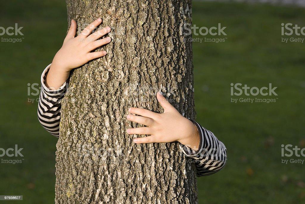 Huging a tree royalty-free stock photo