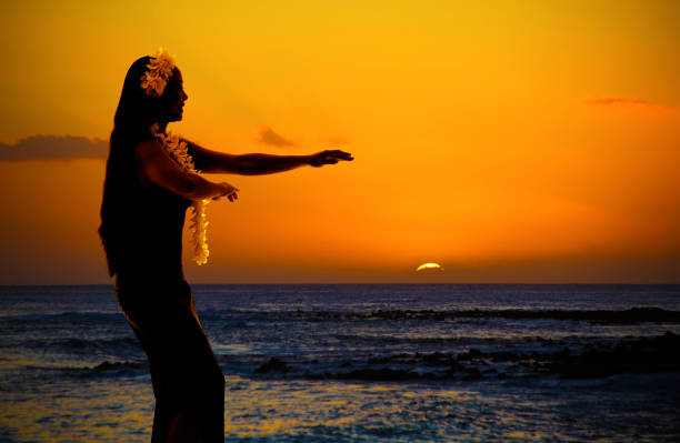 Hula Dancer on Hawaiian Beach at Sunset with Copy Space stock photo