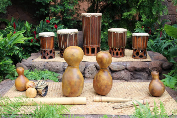 hula instruments - gourd stock photos and pictures