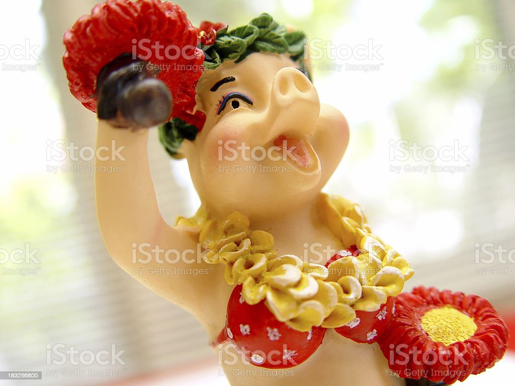 Hula pig! royalty-free stock photo