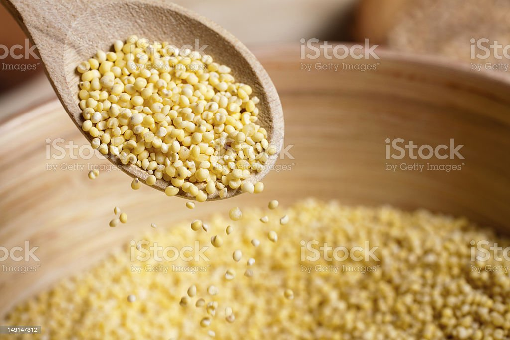 Hulled millet on wooden spoon and bowl stock photo