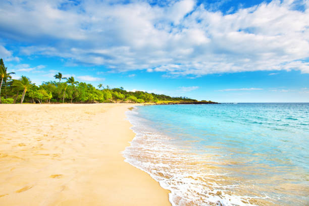 Hulopoe Beach of Lanai Island in Hawaii The Hulopoe Beach, a scenic legendary site on the island of Lanai in Hawaii. bay of water stock pictures, royalty-free photos & images