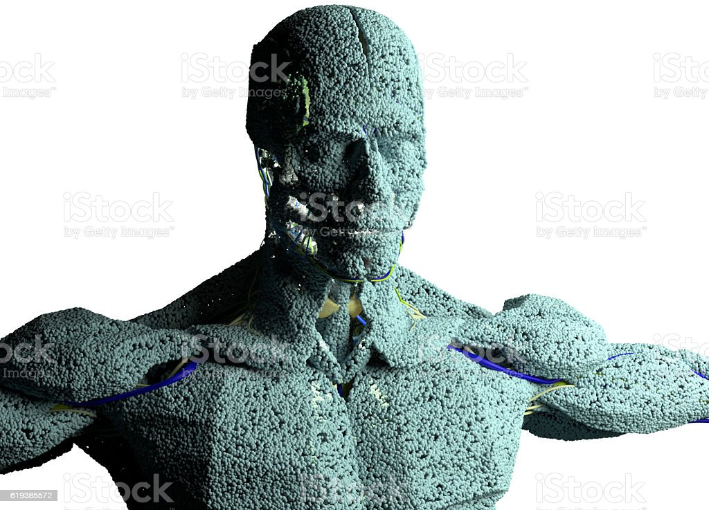 Human Anatomy Model Sculpture Made From Small Particles Stock Photo