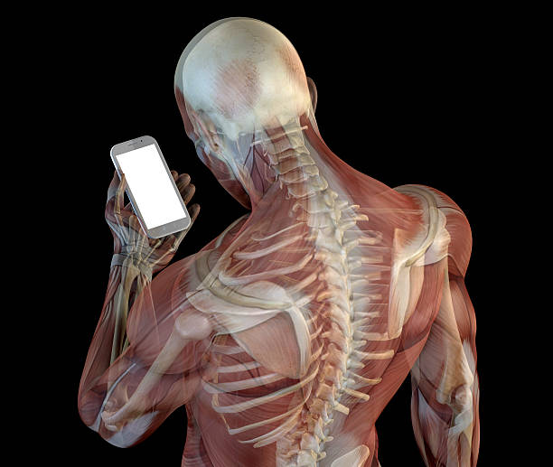Human anatomy showing wrong postures of using the phone Human anatomy showing wrong postures of using the phone. Wrong angle look at the device screen, causing a problem called